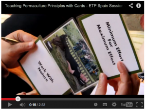 Teaching Principles with Cards Video